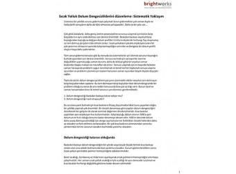 Ocak 2015 Teknik Bülten – Sıcak yolluk Dolum Dengesizliklerini düzenleme: Sistematik Yaklaşım